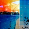Diane Ammunsden, Trustee